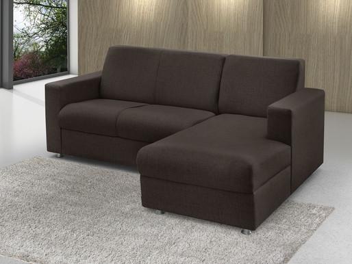 🥇 Insetos comuns em sofás