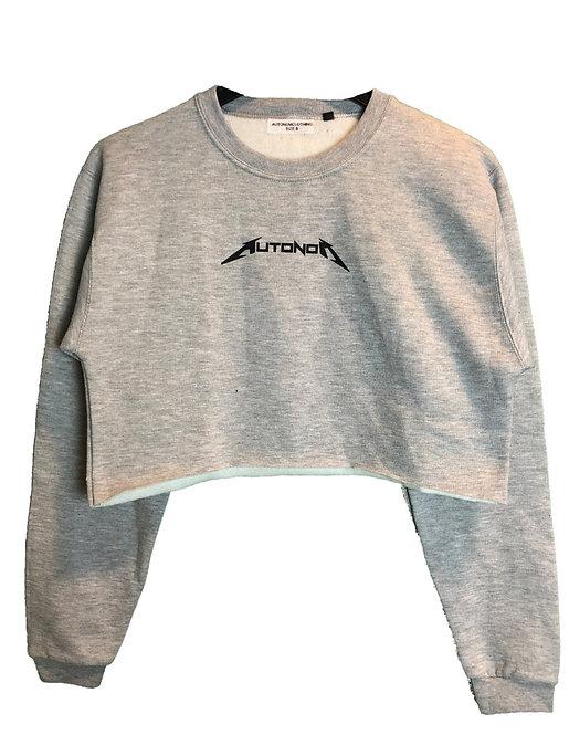 Crop Metal Sweater