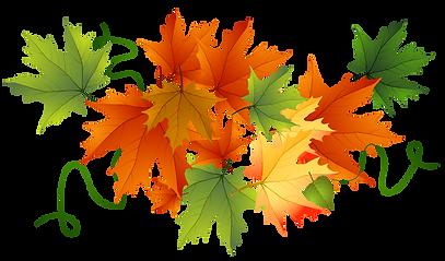 leaf-clipart.png