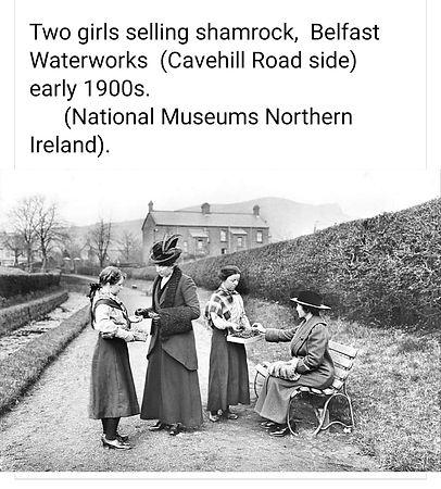 Waterworks St Patrick 1900.jpeg