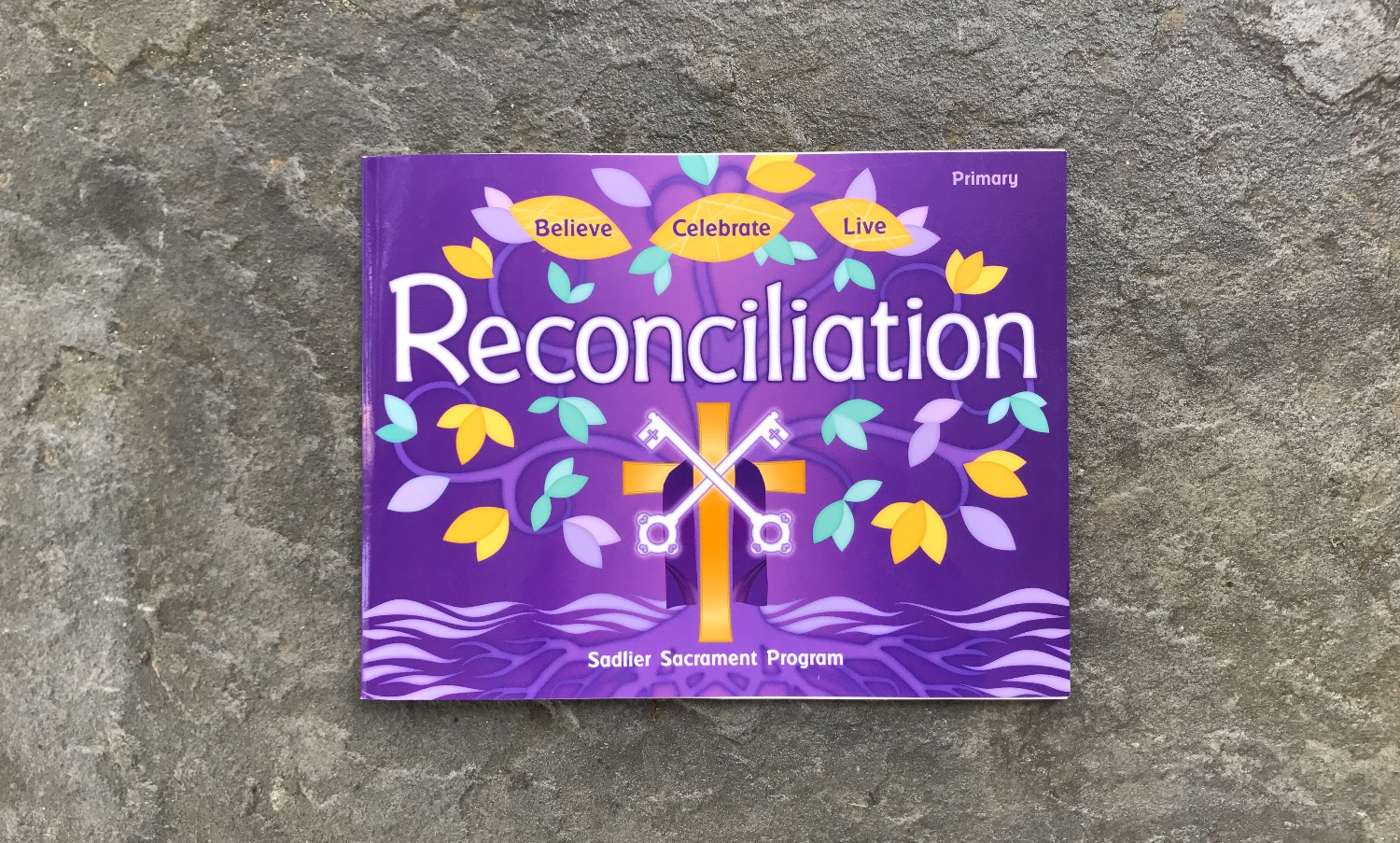 Children's Reconciliation Textbook