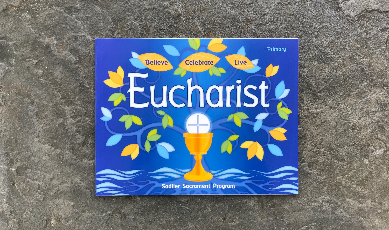 Children's Eucharist Textbook_edited