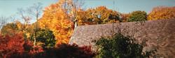 AutumnRoofSJSM_edited