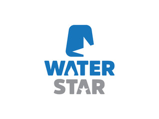 Capital Group WaterStar Award