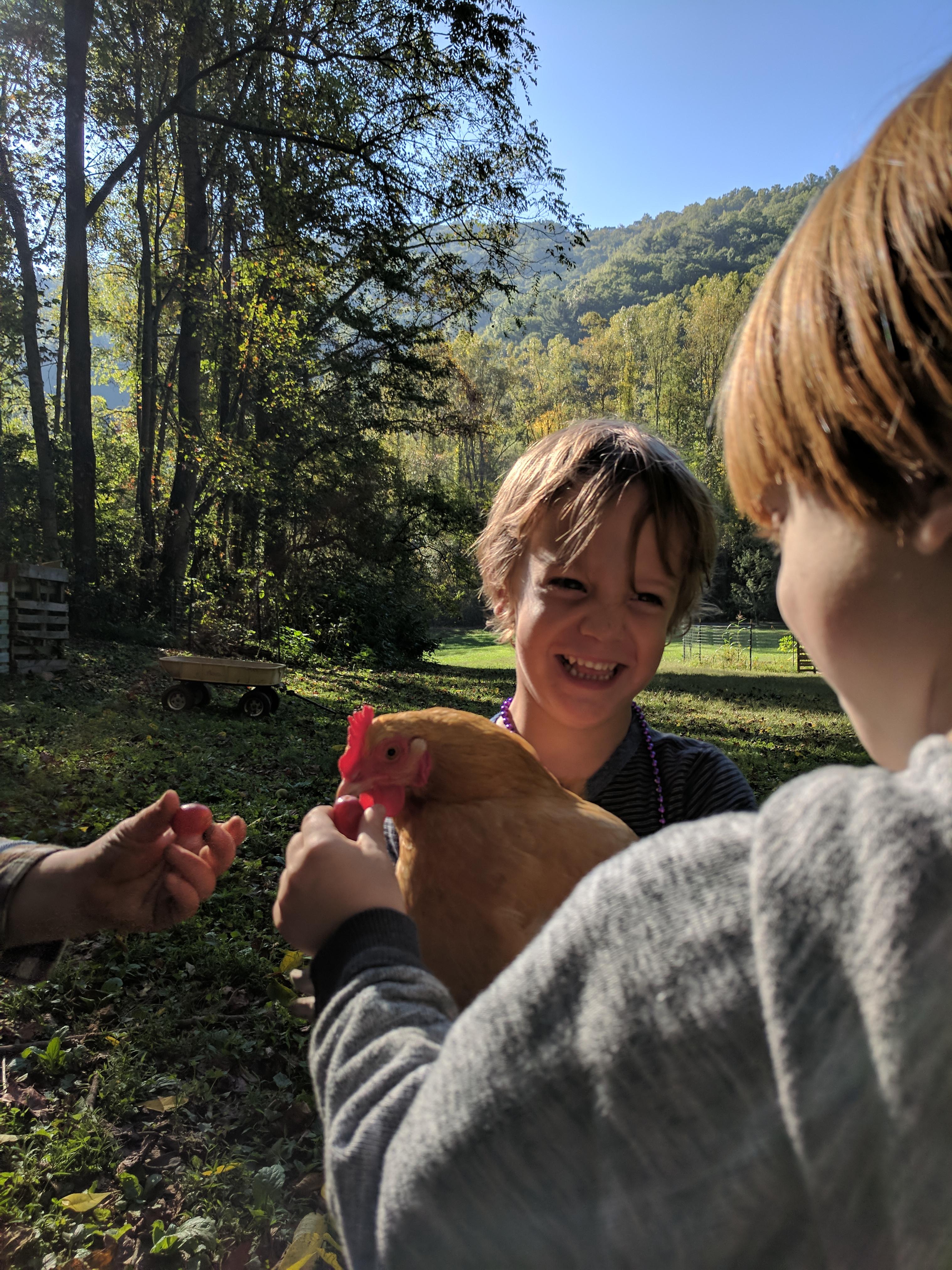 Ashevillefarmstead-kids-chickens-sprouts
