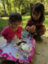 forestschool_chicks_discovery_wonder_chi