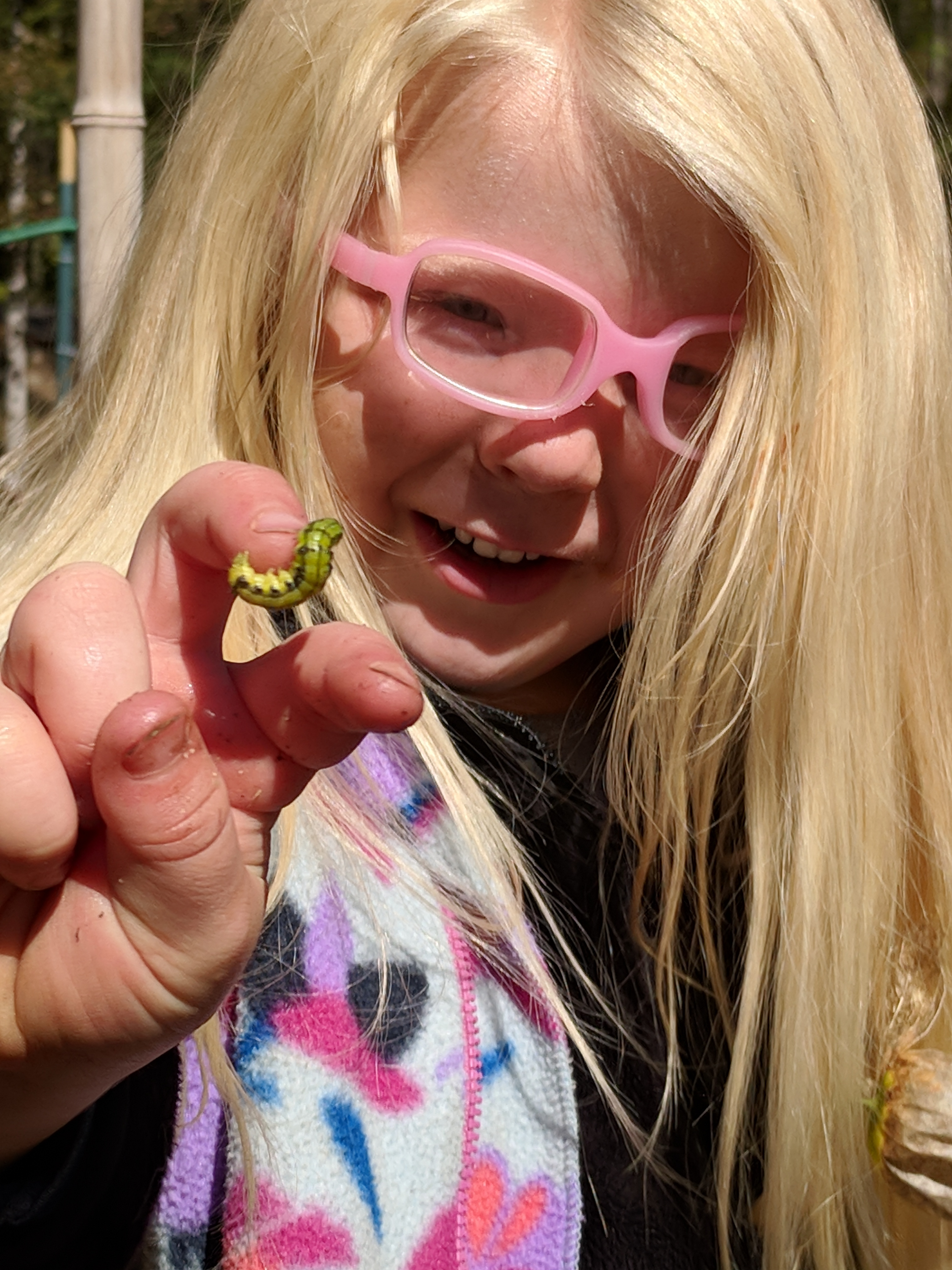 Ashevillefarmstead-sprouts-littlestlearners-nature-outside-forest
