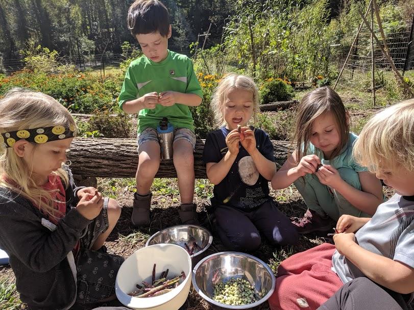 ashevillefarmstead-rainbowridgegarden-farmfresh-littlestlearners-nature