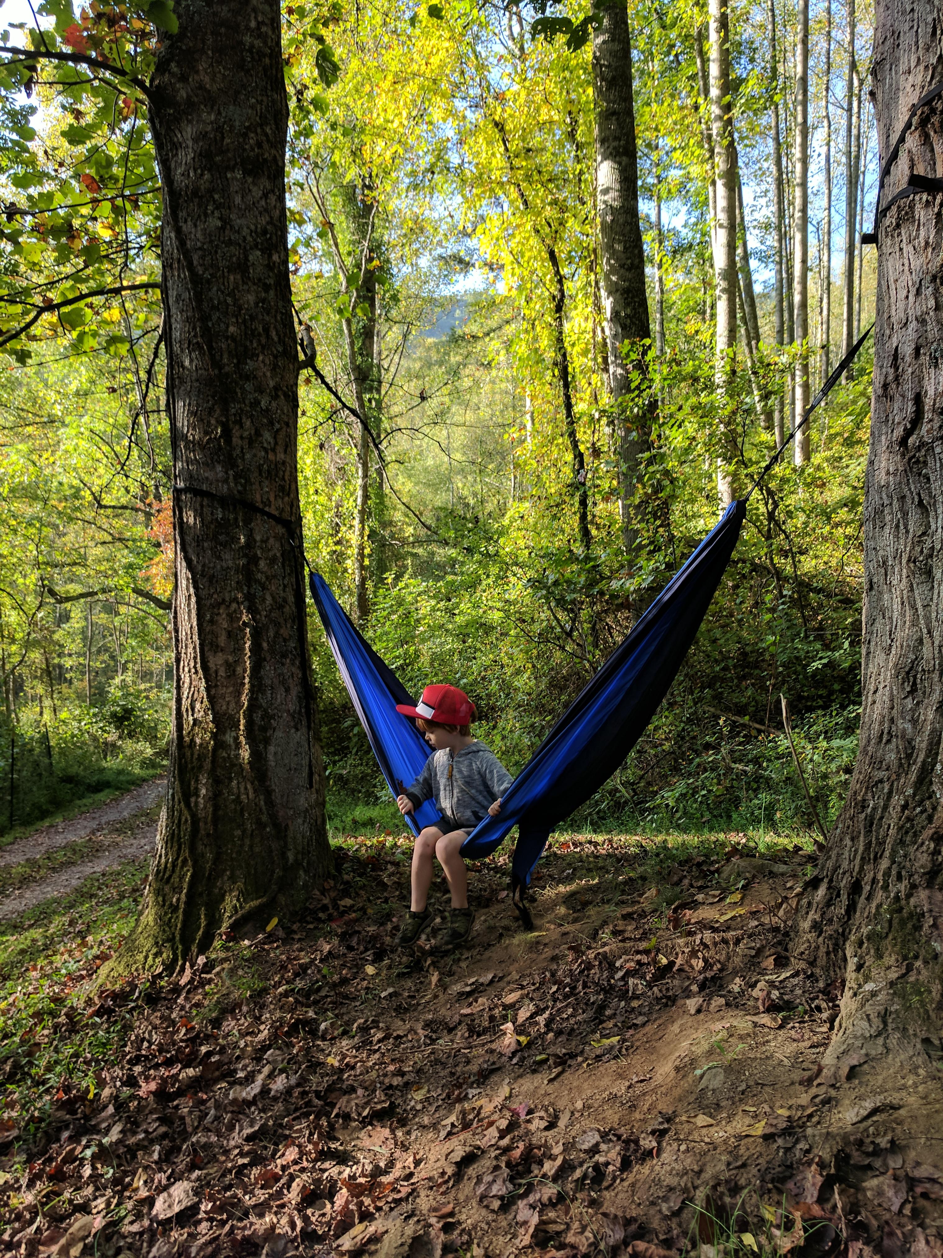 Ashevillefarmstead-kids-forest-hammock