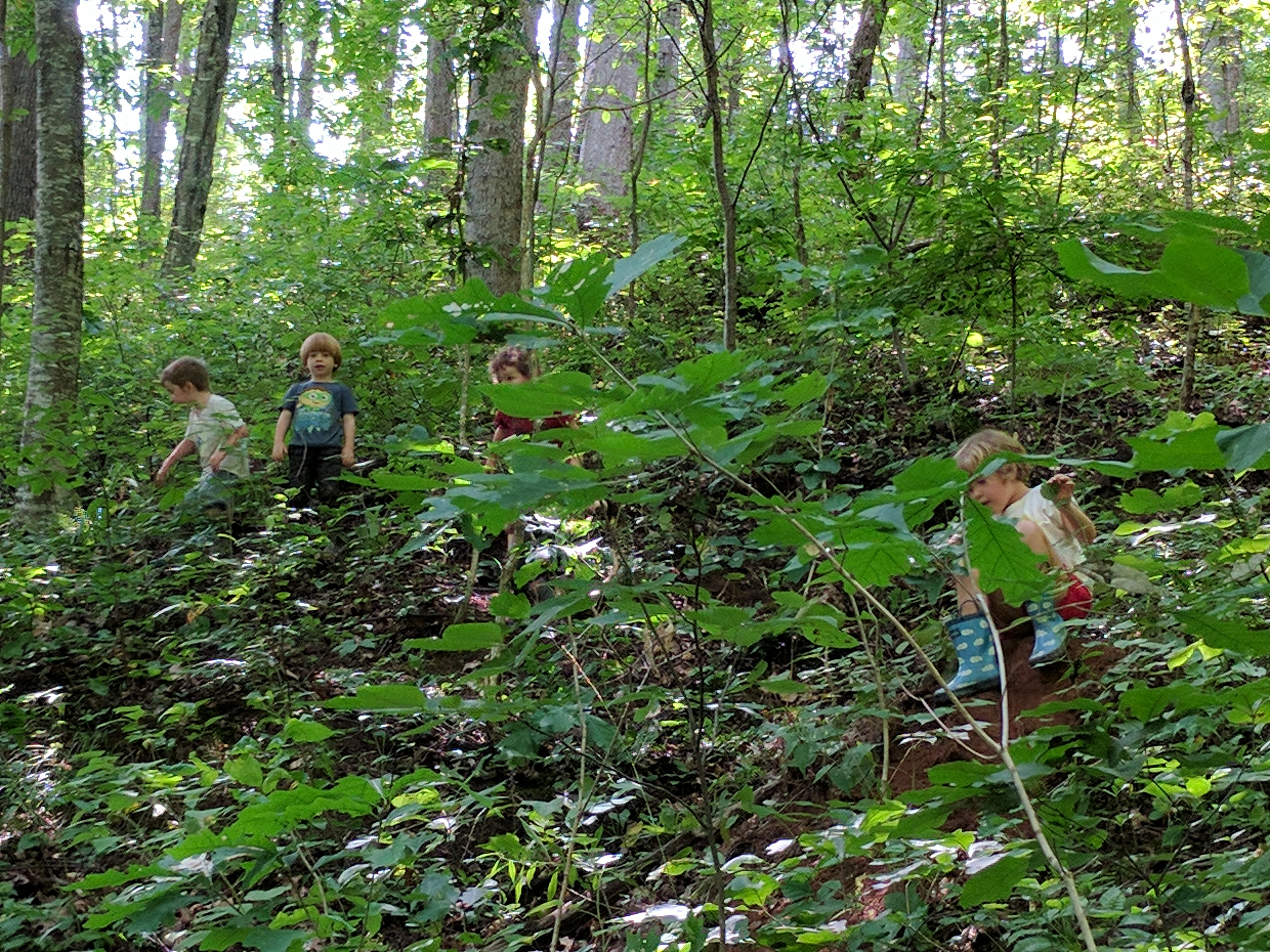 Ashevillefarmstead-kids-Sprouts-forest
