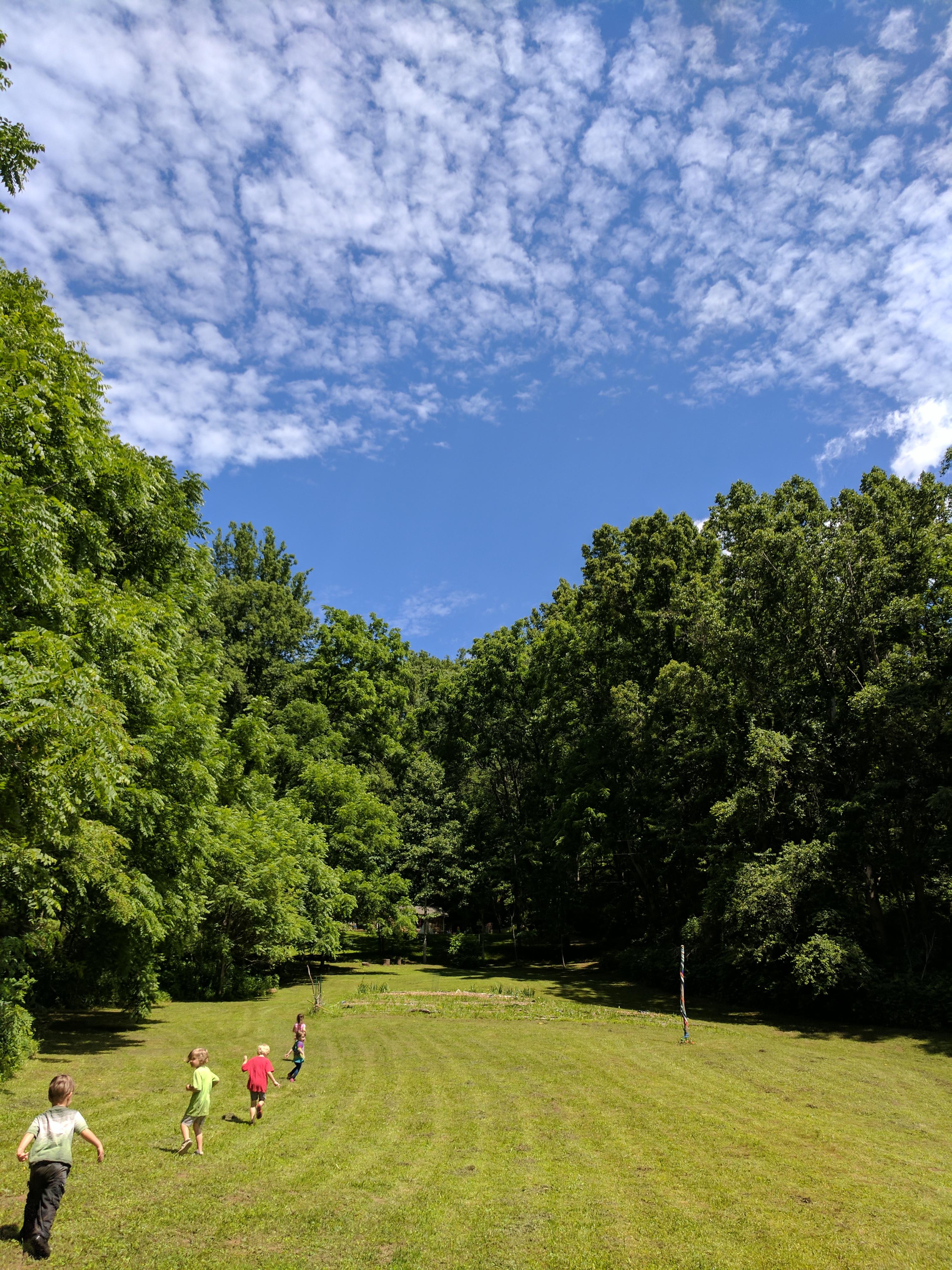 Ashevillefarmstead-kids-field-nature