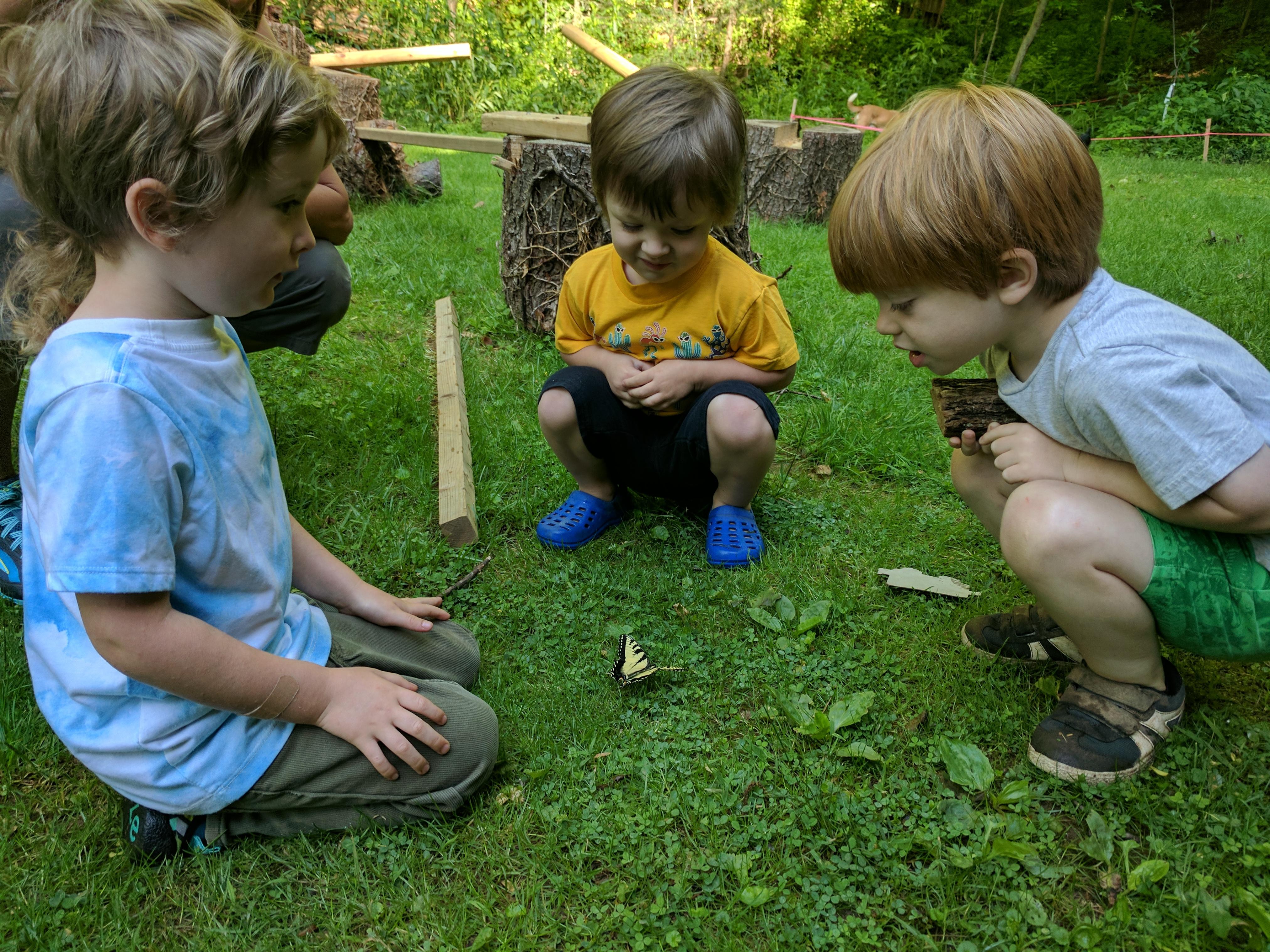 Asheville-farmstead-kids-butterfly-watching
