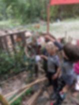 forestschool_monarch_butterfly_milkweed_