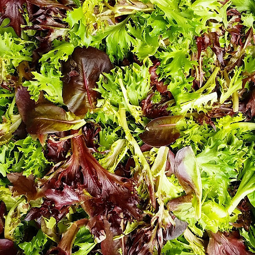 1lb Lettuce Mix (Wholesale)