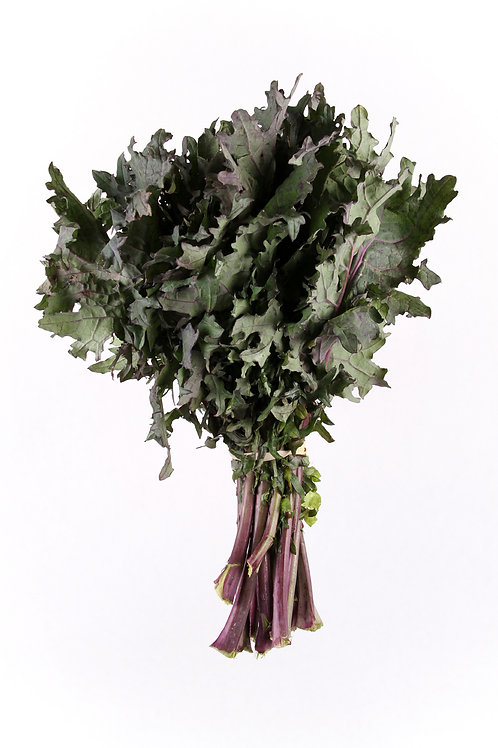 1 Case Red Russian Kale (Wholesale)
