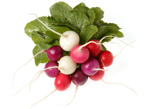 1lb Easter Egg Radish (tops removed)(Wholesale)
