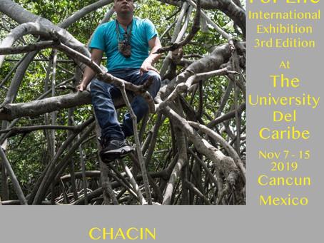 Chacin «Mangrove In Carnival» Nov 7 - 15 2019 Cancún, Mexico