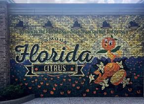 Getting Back to the Magic – Walt Disney World Resort & Universal Orlando Resort