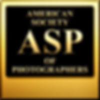 ASP Logo.jpeg