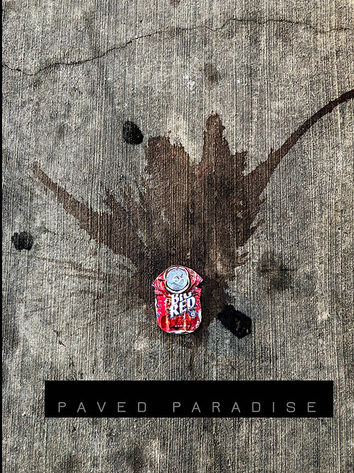 Paved Paradise - A Look at What is Left Behind