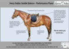 3 - Performance Panel Horse Feb 16.jpg