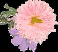 LEFT FLOWER 21 DAYS.png