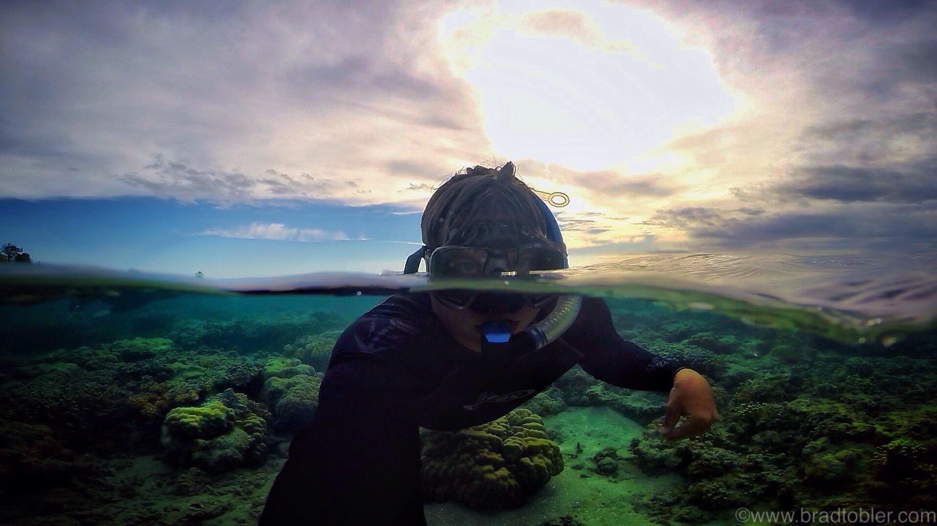snorkeling over/under