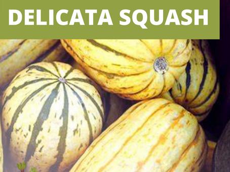 November Seasonal Vegetables