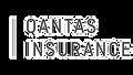 Qantas%20Insurance_edited.png
