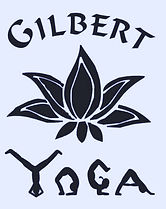 gilbert yoga in east valley yoga teacher training yoga alliance approved hatha yoga raja yoga meditation mindfulness yoga retreat arizona yoga for kids yoga for seniors yoga for beginner yin restorative vinyasa sun salutation surya namaskar yoga training yoga school pregnancy yoga chair yoga asana pranayama mudra.jpg
