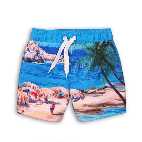 Beach Boys Swim Shorts