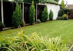 new_garden_08.jpg