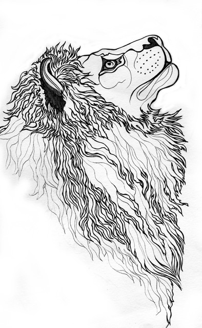 lion linework.jpg