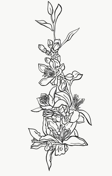 blossoms branch