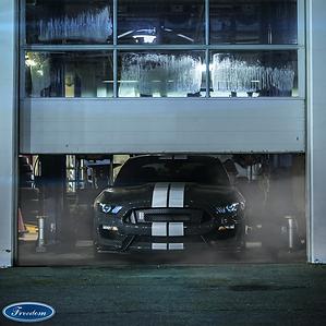 Mustang Monday - Photo 1_00000 (1).png