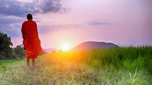 The Beauty of Walking Meditation