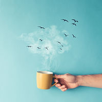 Coffee cup with steam, clouds and birds.
