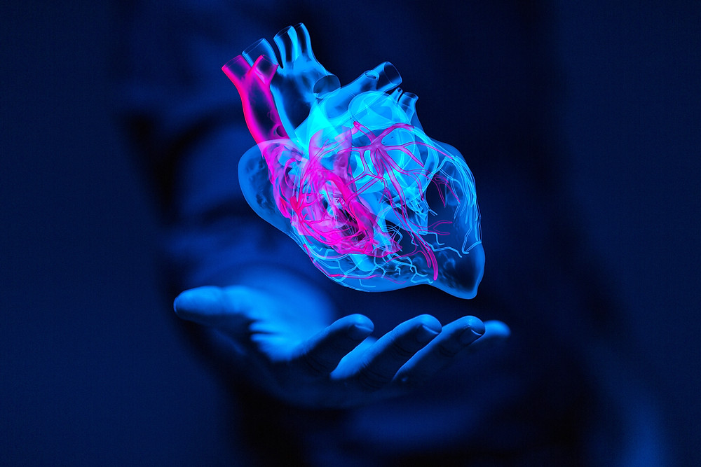 Heart Failure - Temecula Center for Integrative Medicine