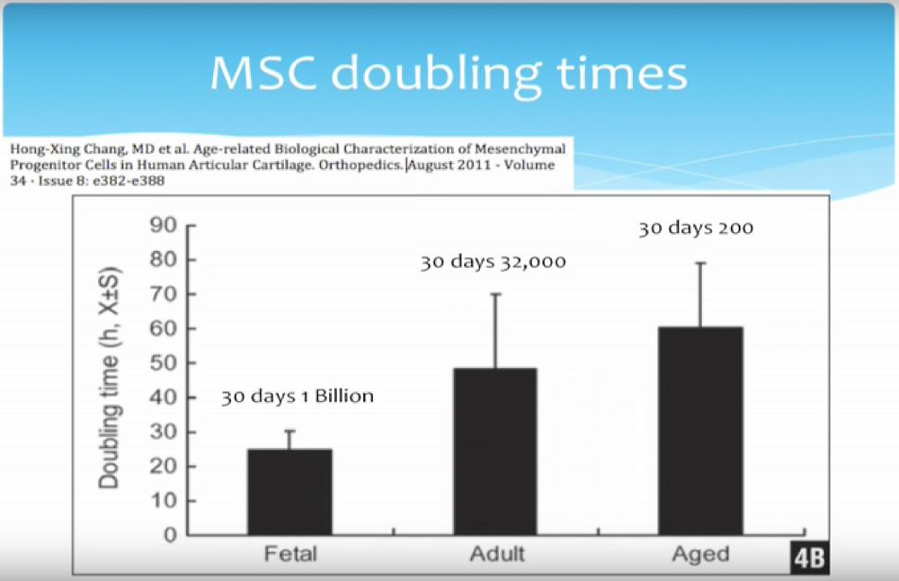 MSC Doubling Times
