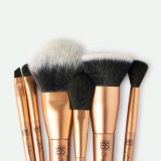 LUXURY BRUSH COLLECTION - 6 PIECE