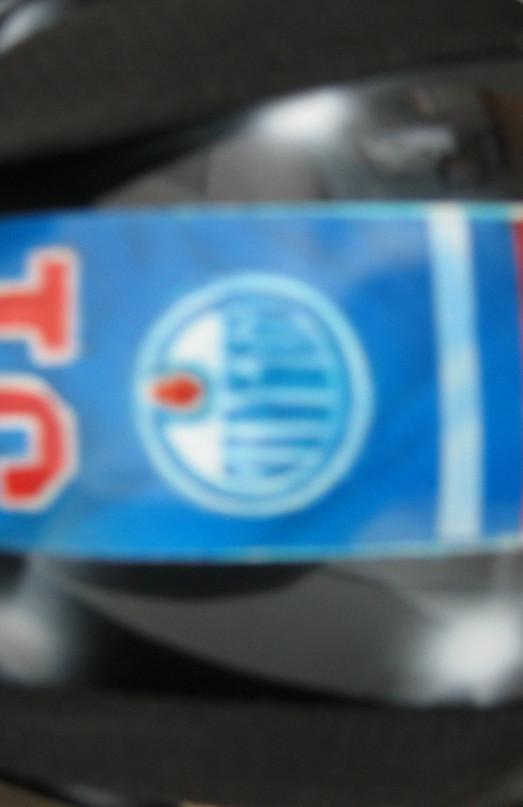 'Coco' _ Grant Fuhr Tribute Airbrush Goalie Mask_ Rear Head Protector