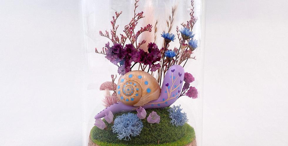 Bulle de verre escargot