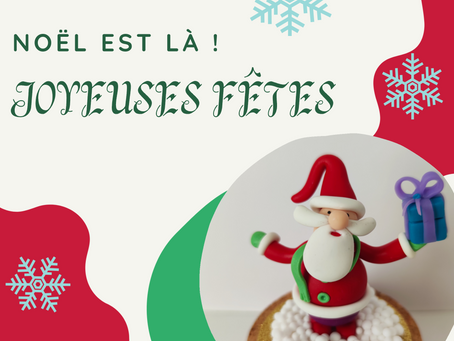 Joyeuses fêtes ✨