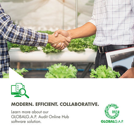 GLOBALG.A.P. Image of two auditors shaking hands in a grren house with lettuces