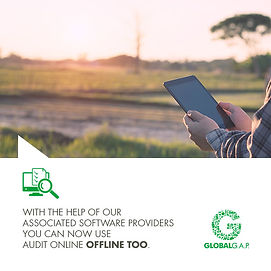 GLOBALG.A.P. Auditor in field with tablet doing a remote audit
