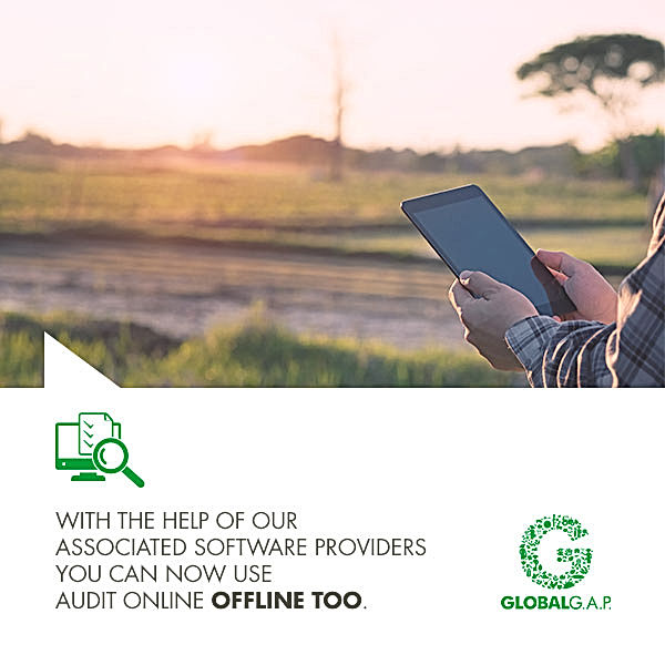 GLOBALG.A.P. imgae of auditor using tablet offline