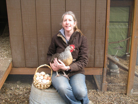 A Year in the Life at 5R Farm