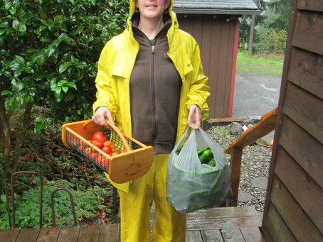 Rainy Garden Wrap-up