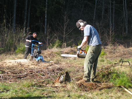 Chainsawing and Stump Grinding