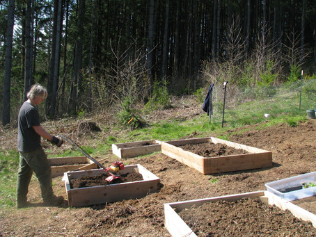 Spring Veggie Planting